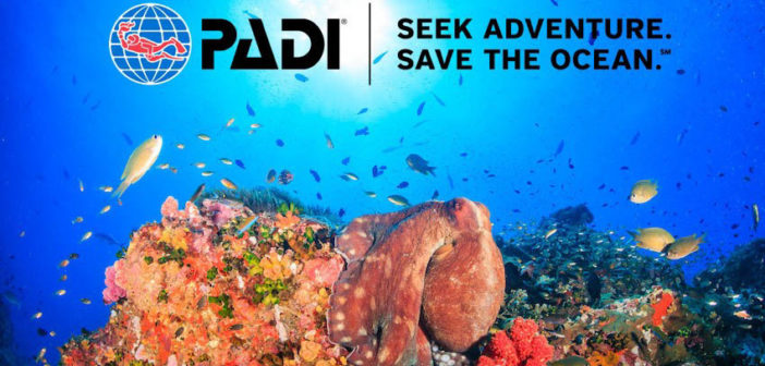 Introducing the All-New PADI Dive Guides: Connecting Divers Worldwide with Local Expertise